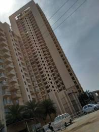 2308 sqft, 4 bhk Apartment in DLF The Primus Sector 82A, Gurgaon at Rs. 1.7500 Cr