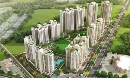 1805 sqft, 3 bhk Apartment in Orchid Petals Sector 49, Gurgaon at Rs. 1.3400 Cr