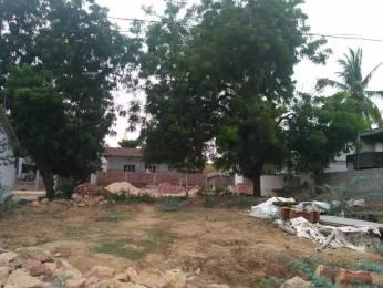4149 sqft, Plot in Builder Project Satrampadu, Eluru at Rs. 70.0000 Lacs