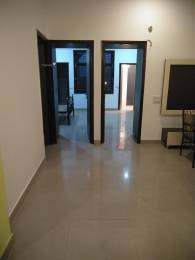1575 sqft, 2 bhk Apartment in Builder Project Basant evenue, Ludhiana at Rs. 16000