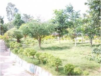 900 sqft, Plot in Builder nbr meadows Alasanatham, Hosur at Rs. 5.3915 Lacs
