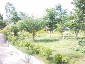 900 sqft, Plot in NBR Land Developers and Builders NBR Meadows Hosur, Bangalore at Rs. 5.3910 Lacs