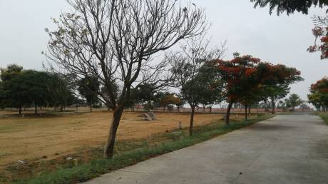 1500 sqft, Plot in NBR Hills View Chikballapur, Bangalore at Rs. 31.5000 Lacs