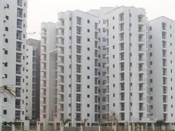 1446 sqft, 3 bhk Apartment in Piyush Heights Sector 89, Faridabad at Rs. 42.0000 Lacs