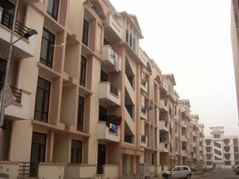 2250 sqft, 3 bhk Apartment in SRS Pearl Heights Sector 87, Faridabad at Rs. 43.0000 Lacs