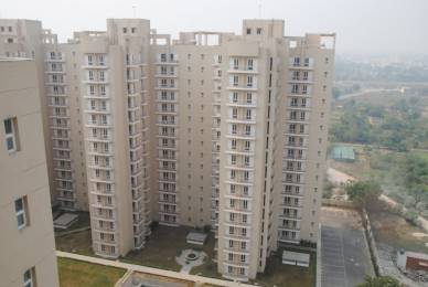 1130 sqft, 2 bhk Apartment in Shiv Park 1 Apartments Sector 87, Faridabad at Rs. 43.0000 Lacs