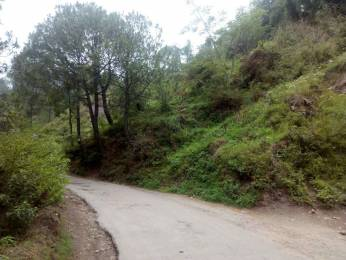 2200 sqft, Plot in Builder Plot for sale Dharampur Basholu Road, Solan at Rs. 30.0000 Lacs