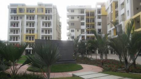 1365 sqft, 3 bhk Apartment in Builder Project Katara, Bhopal at Rs. 23.0000 Lacs