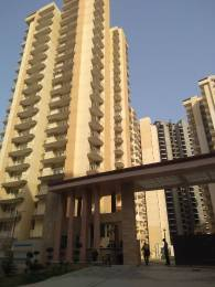 965 sqft, 2 bhk Apartment in Anthem French Apartments Sector 16B Noida Extension, Greater Noida at Rs. 30.0000 Lacs