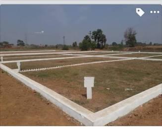 1000 sqft, Plot in Builder Tashi Naubatpur Bikram Road, Patna at Rs. 6.5100 Lacs
