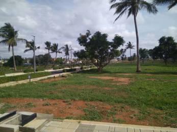 1200 sqft, Plot in Builder exotica Sarjapur, Bangalore at Rs. 34.8020 Lacs