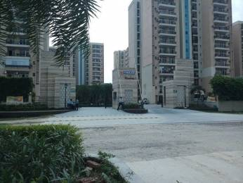 1292 sqft, 2 bhk Apartment in Omaxe Residency Phase 1 gomti nagar extension, Lucknow at Rs. 55.0000 Lacs