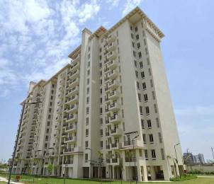 1395 sqft, 3 bhk Apartment in Emaar Emerald Estate Sector 65, Gurgaon at Rs. 1.0700 Cr