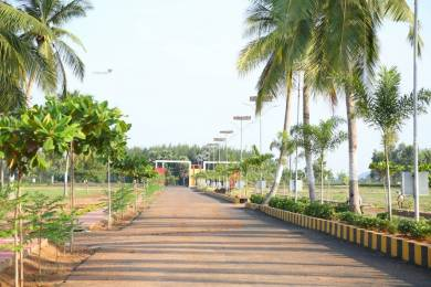 1800 sqft, Plot in Bhoomatha Amaravati Green City Modavalasa, Visakhapatnam at Rs. 14.0000 Lacs