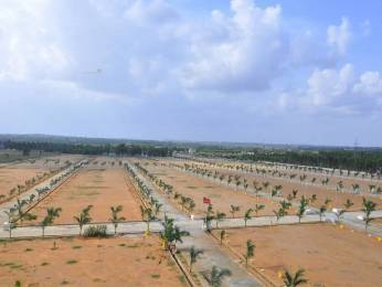 1494 sqft, Plot in Peram Aditya Grand Tagarapuvalasa, Visakhapatnam at Rs. 17.4300 Lacs
