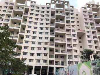 1165 sqft, 2 bhk Apartment in Goel Ganga Glitz F Bldg Undri, Pune at Rs. 67.0000 Lacs