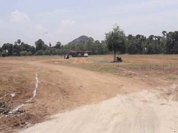 1197 sqft, Plot in Builder Project Vizianagaram Road, Visakhapatnam at Rs. 6.6487 Lacs
