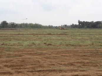 1197 sqft, Plot in Builder PEARL COAST Vizag Srikakulam Highway, Visakhapatnam at Rs. 7.9800 Lacs