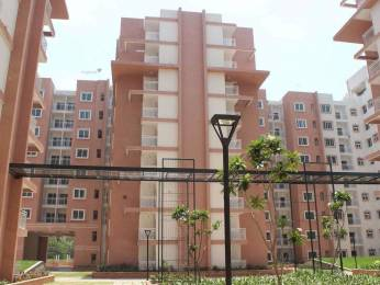 1450 sqft, 3 bhk Apartment in Brigade Wisteria At Meadows Kanakapura Road Beyond Nice Ring Road, Bangalore at Rs. 69.5000 Lacs