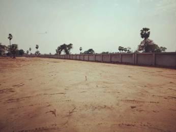 1200 sqft, Plot in Builder Project Maner Road, Patna at Rs. 9.0000 Lacs