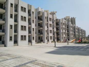550 sqft, 1 bhk Apartment in Signature Solera Sector 107, Gurgaon at Rs. 12.5300 Lacs