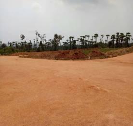 810 sqft, Plot in Builder Project Tagarapuvalasa, Visakhapatnam at Rs. 10.3500 Lacs