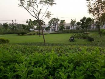 1211 sqft, Plot in Eldeco Shaurya Plots Bijnor, Lucknow at Rs. 24.0000 Lacs