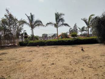 9900 sqft, Plot in Builder sai gold city Bypass, Indore at Rs. 13.2000 Lacs