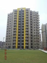 1303 sqft, 2 bhk Apartment in RPS Savana Sector 88, Faridabad at Rs. 25000