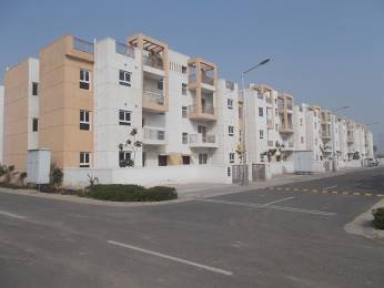 1620 sqft, 3 bhk BuilderFloor in BPTP Park Elite Floors Sector 85, Faridabad at Rs. 7500