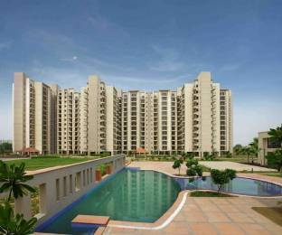 1248 sqft, 2 bhk Apartment in Umang Summer Palms Sector 86, Faridabad at Rs. 45.0000 Lacs