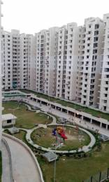 1650 sqft, 3 bhk Apartment in SRS Royal Hills Sector 87, Faridabad at Rs. 19000