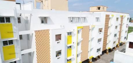 954 sqft, 2 bhk Apartment in Ramani Green Park Ganapathy, Coimbatore at Rs. 42.0000 Lacs