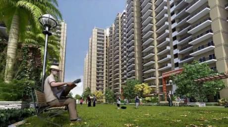 1030 sqft, 2 bhk Apartment in Gulshan Ikebana Sector 143, Noida at Rs. 56.6000 Lacs