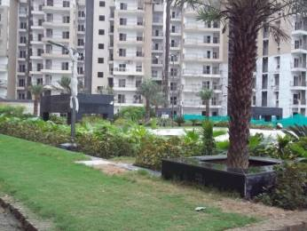 1230 sqft, 2 bhk Apartment in Ajnara Grand Heritage Sector 74, Noida at Rs. 55.4000 Lacs