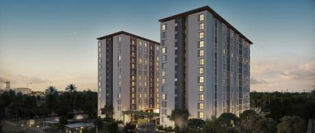 990 sqft, 2 bhk Apartment in Assetz Here and Now Thanisandra, Bangalore at Rs. 66.0000 Lacs