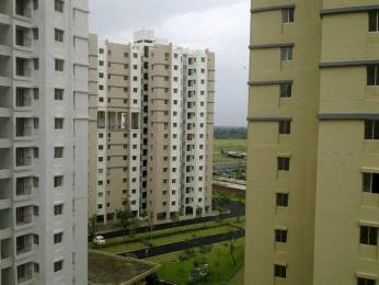 480 sqft, 1 bhk Apartment in Shapoorji Pallonji Group of Companies SP Shukhobristhi New Town, Kolkata at Rs. 16.0000 Lacs