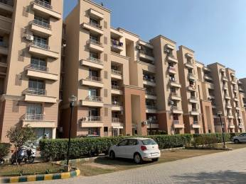 1725 sqft, 3 bhk Apartment in Parkwood Glade Sector 116 Mohali, Mohali at Rs. 45.0000 Lacs