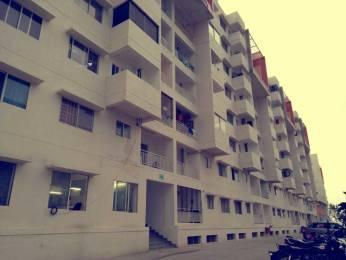965 sqft, 2 bhk Apartment in Sipani Bliss Chandapura, Bangalore at Rs. 8000