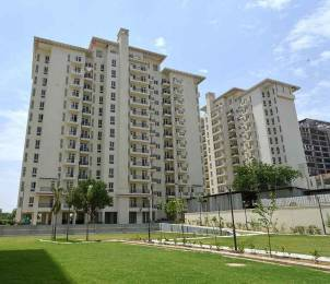 1020 sqft, 2 bhk Apartment in Emaar Emerald Estate Sector 65, Gurgaon at Rs. 25000