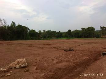 2178 sqft, Plot in Builder Skodi Mulki, Mangalore at Rs. 2.5000 Lacs