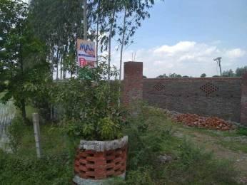 1000 sqft, Plot in Builder Hind City raibareli road nigohan, Lucknow at Rs. 7.9900 Lacs