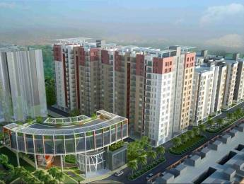 1100 sqft, 3 bhk Apartment in Siddha Aangan Bagru, Jaipur at Rs. 24.2000 Lacs