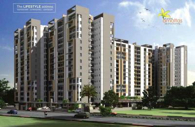 1466 sqft, 2 bhk Apartment in Platinum Amaltas Panchyawala, Jaipur at Rs. 43.9700 Lacs