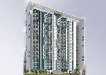 565 sqft, 1 bhk Apartment in Builder Anukampa Genesis Vaishali Nagar, Jaipur at Rs. 10000