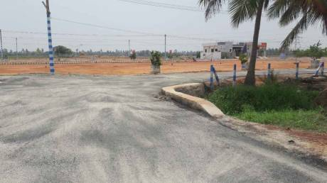 1629 sqft, Plot in Builder Project Kakinada G Mamidada Road, Kakinada at Rs. 19.0000 Lacs