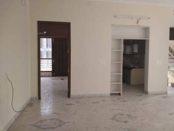 1600 sqft, 3 bhk BuilderFloor in Builder 3 BHK Builder Floor available for Rent in Sector 46 Sector 46, Gurgaon at Rs. 30000