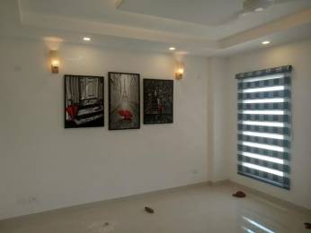 2800 sqft, 4 bhk BuilderFloor in Builder 4 BHK Independent Builder Floor for Sale in Gurgaon Sector 52, Gurgaon at Rs. 1.3000 Cr
