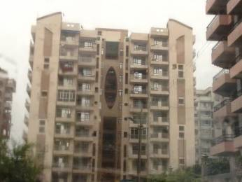 2250 sqft, 3 bhk BuilderFloor in Builder 3 BHK Residential Apartment available for sale in sector 52 Sector 52, Gurgaon at Rs. 1.3200 Cr