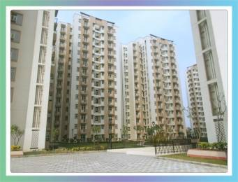 800 sqft, 2 bhk Apartment in Shree Mantra Sector 67, Gurgaon at Rs. 45.0000 Lacs